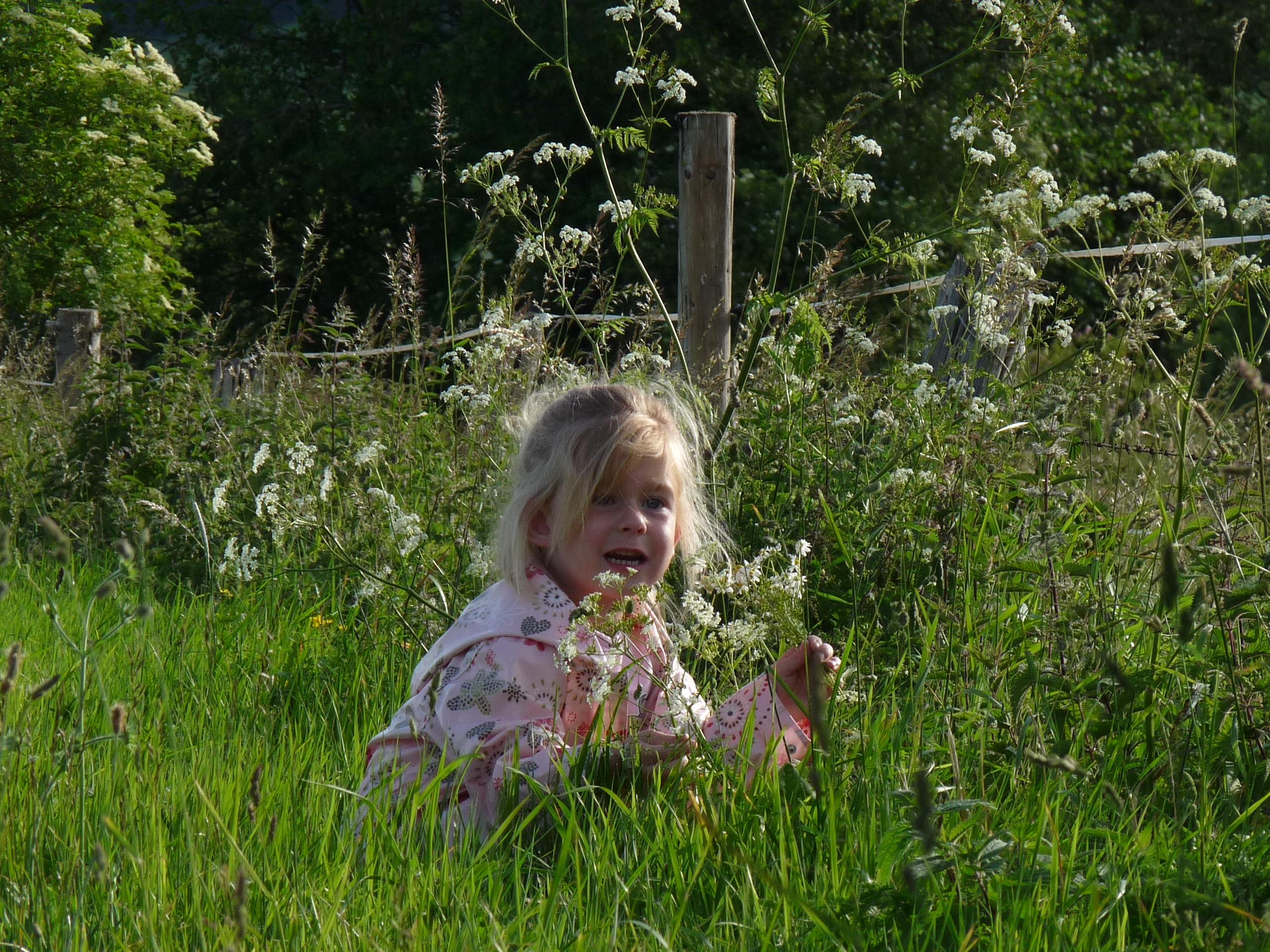 Grasflecken